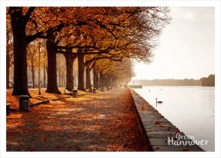 GreenHannover Postkarte Maschsee Herbst