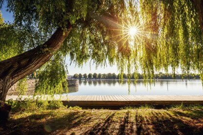 GreenHannover_Print_Maschsee