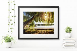 GreenHannover_Print_Maschsee_40x30